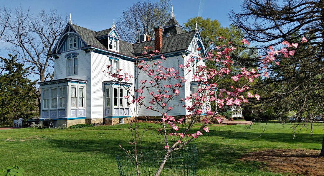 White Victorian house with large green yard and a tall tree covered in pink blossoms